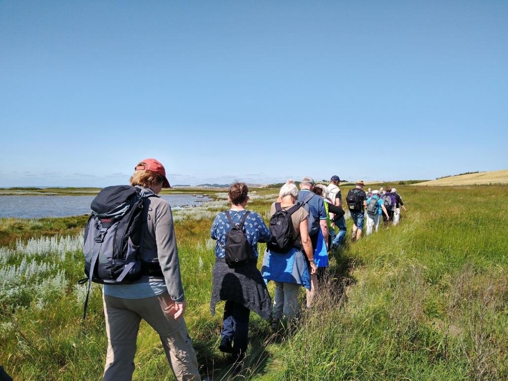 Friluftsliv - brug naturen sommerkursus på Rønde Højskole